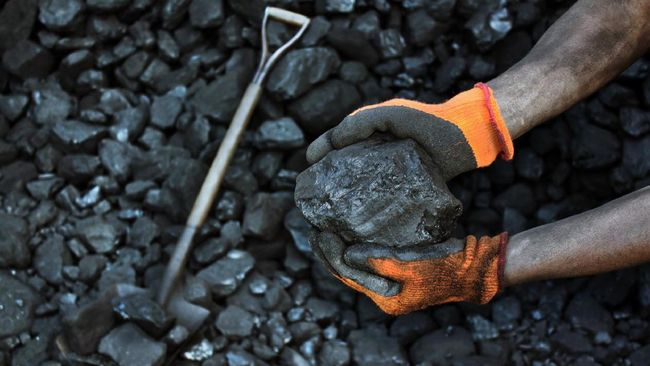 Bank to Stop Support for Coal Investments